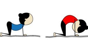 Anjayati-Yoga-Le-chat