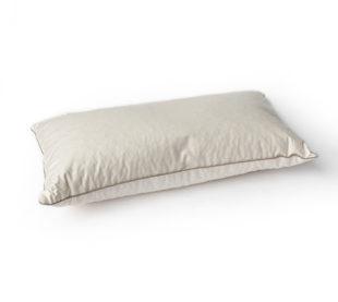oreiller-repose-nuque-epeautre