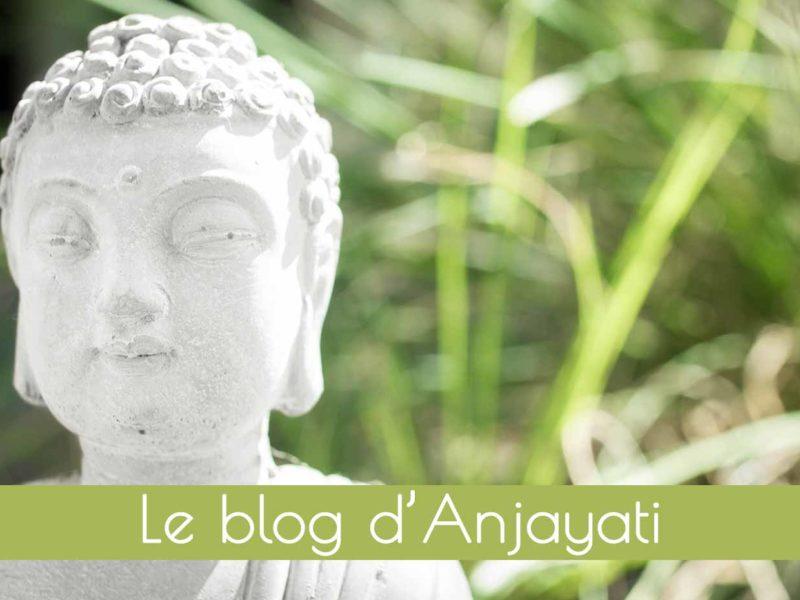 le-blog-du-yoga